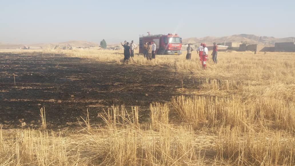 خبرنگاران 5 هکتار از گندمزارها و تپه های پلدختر در آتش سوخت