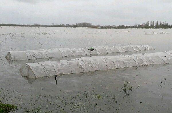 سامانه بارشی جدید در راه گیلان ، احتمال آبگرفتگی خزانه ها و لبریز شدن شالیزارها
